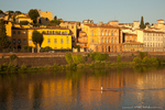 Rowing on the Arno river in Florence, Italy