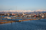 Homer Port & Harbor, Alaska