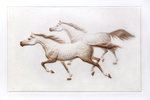 Horses relief on paper painted with watercolor